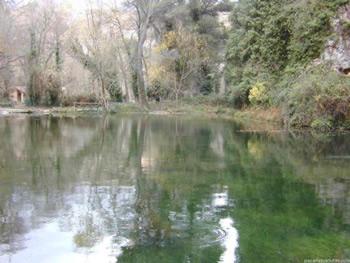Una piedra en un estanque
